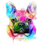 Paint By Numbers Kit Colorful Dog - Just Paint by Number