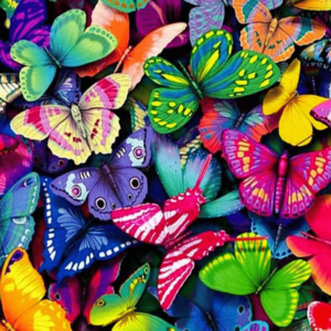 Colorful Butterflies Paint By Number Kit - Just Paint by Number