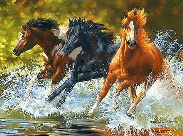 Paint by Numbers Kit Horses Running - Just Paint by Number